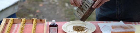 Как приготовить спиртовую настойку прополиса?