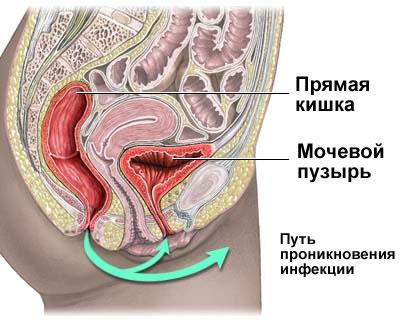 analniy-seks-podgotovka-pravila