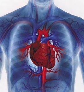 Гипертоническая болезнь 3 степени и ее характеристика