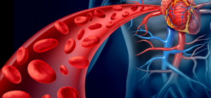 Как почистить кровь народными средствами в домашних условиях?