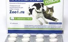 Применение препарата Каниквантел
